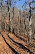 Descending down the White Trail. Busiek State Forest and Wildlife Area