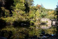 Pool below Long Creek Falls