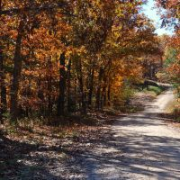 Glade Top Trail - Mark Twain National Forest - Taney County & Ozark County Missouri