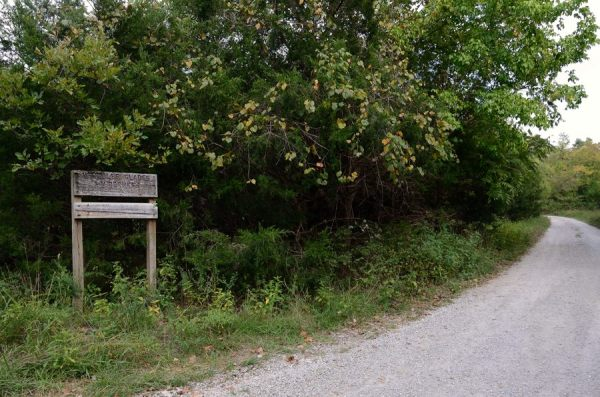 The track leading up to the Coy Bald Trailhead