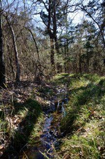 Ephemeral creek by the Devil's Den Trail