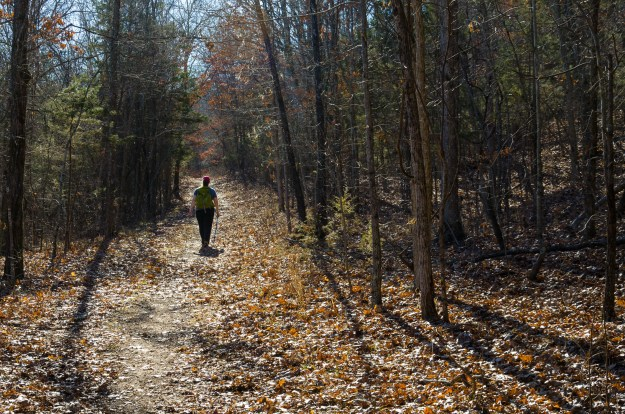 Hiking on the silver trail at Busiek State Forest