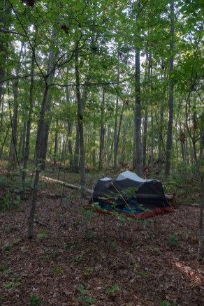 Wild camping with a Mutha Hubba tent in the Mark Twain National Forest
