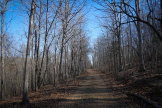 Busiek Silver Trail -- The first part of the trail is easy going