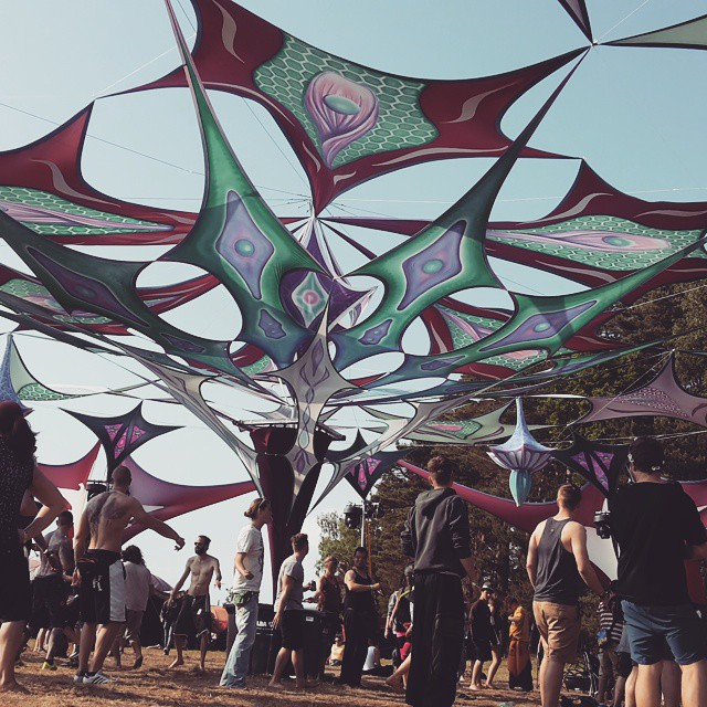 Psychedelic Circus | Festival