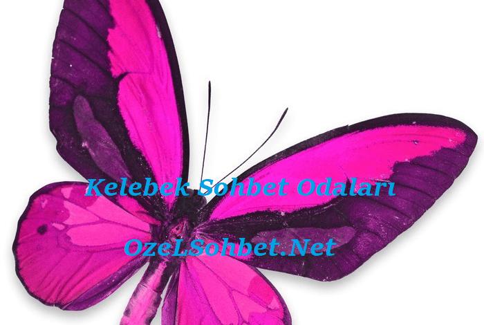 Kelebek Sohbet, OzelSohbet.Net