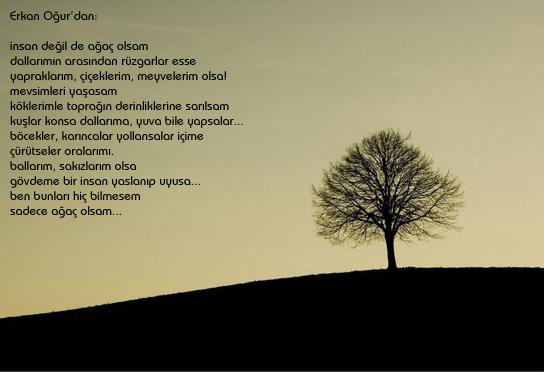 Erkan Oğur