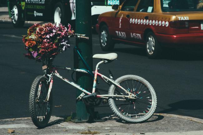 La Bici de Alvaro Obregon