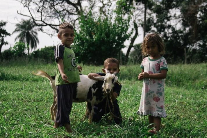 Little Neighbors and Their Goats