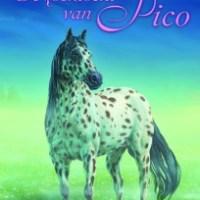 De zoektocht van Pico