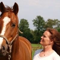 Boekenserie Gouden paarden