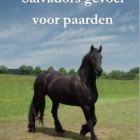 Paardenboeken 11+