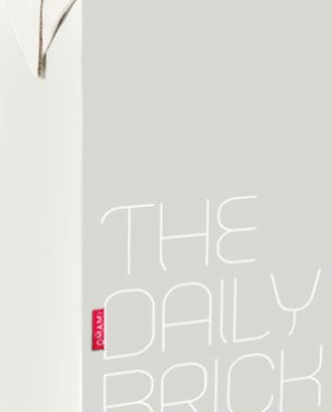 Logo and application of The Daily Brick