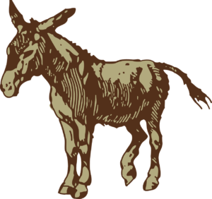 donkey-46714_1280