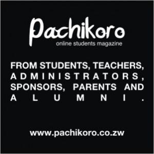 Pachikoro