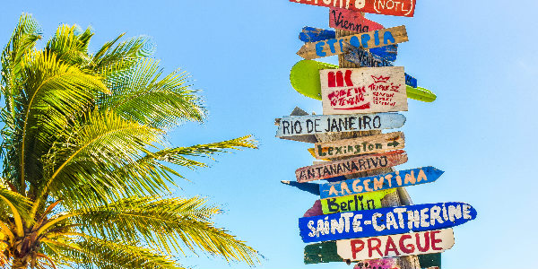 Travel Insurance Article
