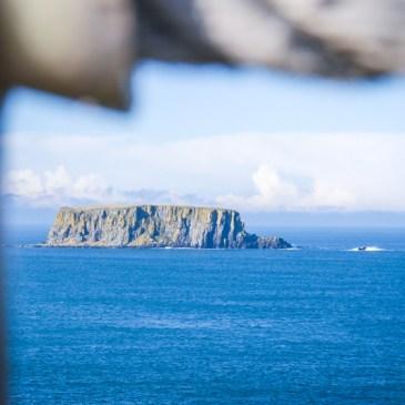 Surprise trip to Northern Ireland {Photos}