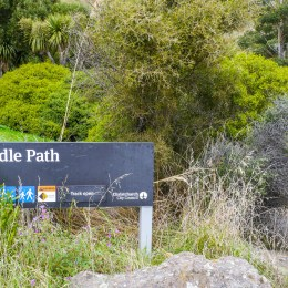 Bridle Path, Christchurch