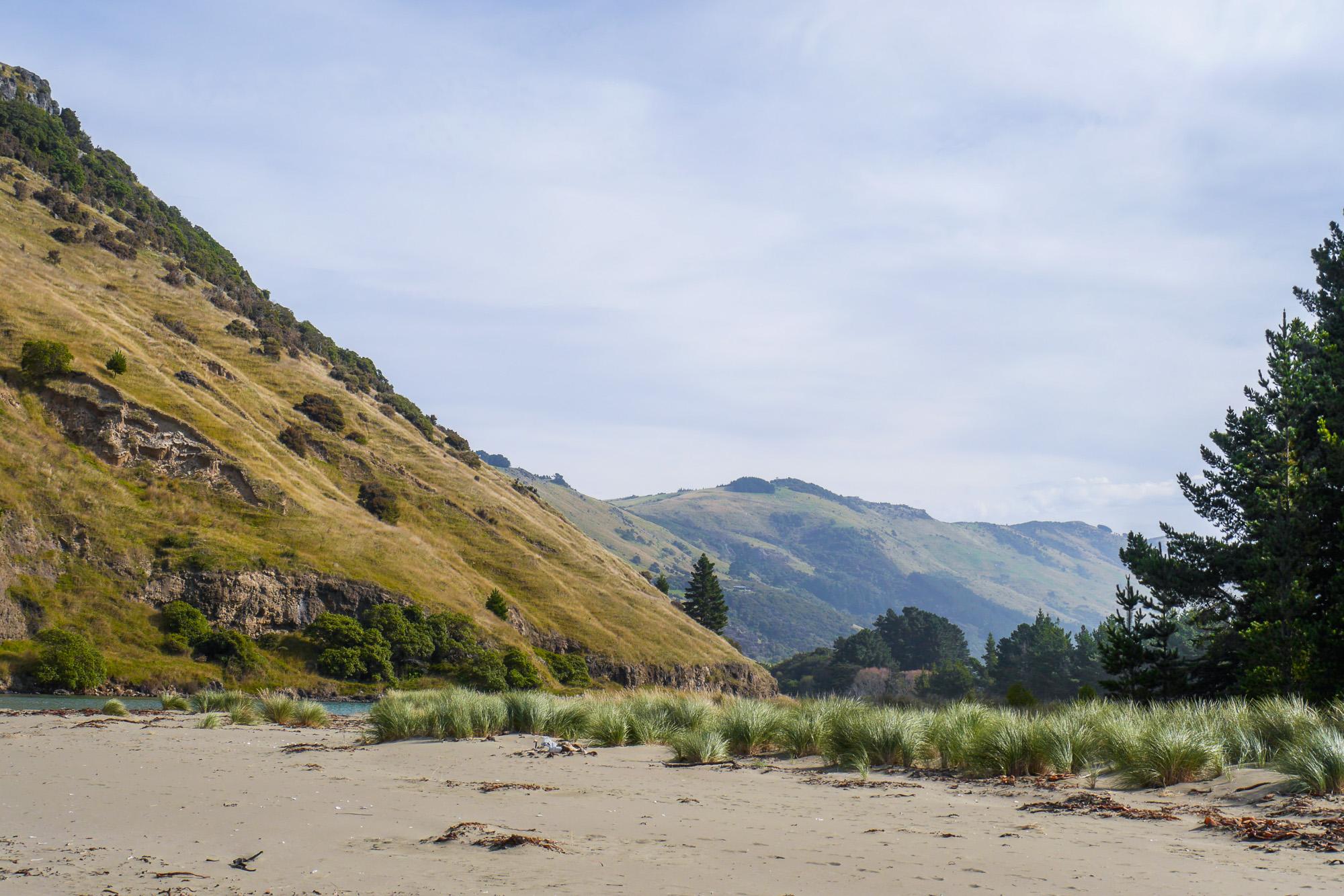Le bons Bay Christchurch