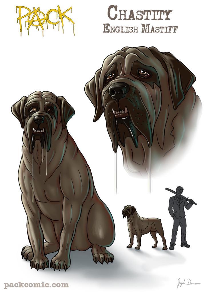 Bio Pick of Chastity, the English Mastiff