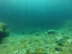 Diving in Krk Island, Croatia. By Packing my Suitcase