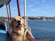 On a boat, Croatia