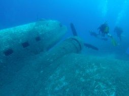 Airplane Wreck