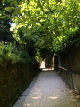The way up to the Ljubljana Castle