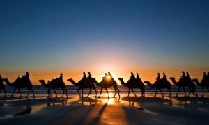 Desert Camel Ride | Groupon
