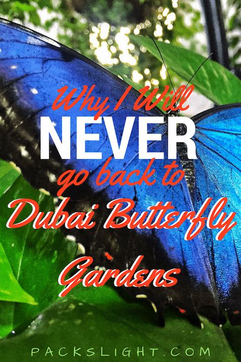 Dubai Butterfly Garden Pin 2 | Packs Light