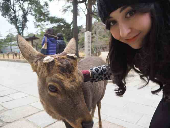 A day of deer and Buddha in Nara, Japan | PACK THE SUITCASES