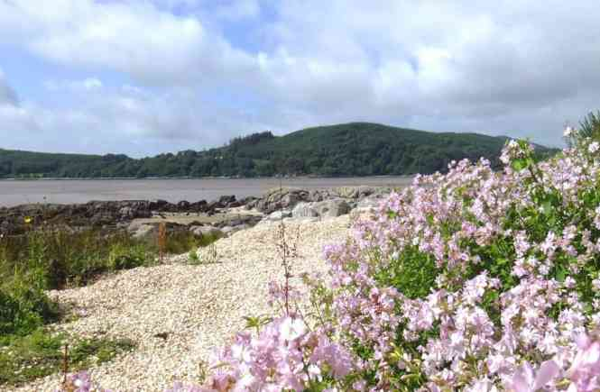 Rockcliffe to Kippford - the best coastal walk in Scotland | PACK THE SUITCASES
