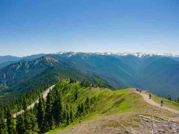 Olympic National Park Road Trip: Hurricane Ridge