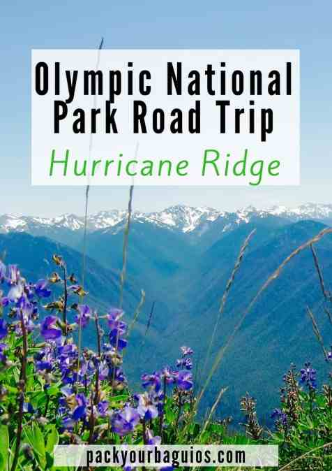 Olympic National Park Road Trip: Hurricane Ridge