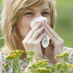 ¿Alergia? Vence a tu enemigo