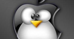 Snow Leopard server vs. Ubuntu server