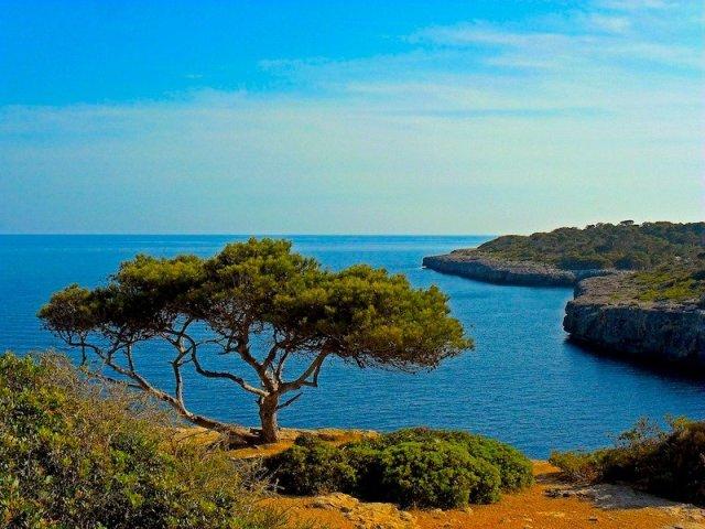 Pacotes de férias em Maiorca e Menorca