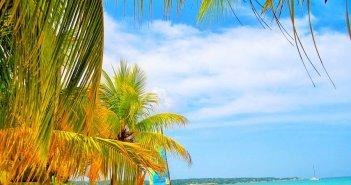 Pacotes para a Jamaica