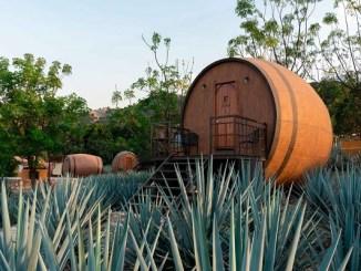Tequila, pueblo mágico con paisaje agavero