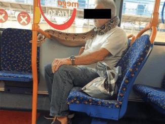 Sujeto sorprende al llevar una serpiente a manera de cubrebocas en el transporte público