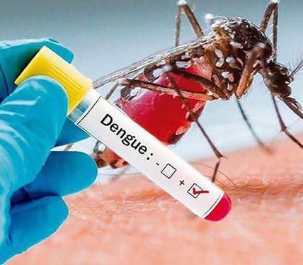 Reportan segundo caso de dengue en Yucatán