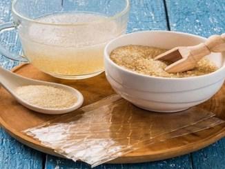 ¡La gelatina también es gastronomía internacional! Conoce sus tipos y sus usos