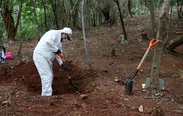 Descubren 59 cuerpos en fosas clandestinas en Guanajuato, advierten que podrían ser más