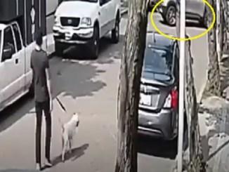 Sujeto atropella a joven y a su mascota en calles de la Álvaro Obregón #VIDEO