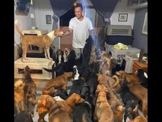 """Rescatista da refugio a perros, gatos, gallinas y hasta borregos durante el paso de """"Delta"""""""