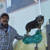 """""""La amo más que a mi vida"""" asegura dueño de perrita que se volvió viral"""