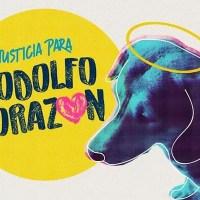 Exigen #JusticiaParaRodolfo, perrito asesinado a machetazos en Sinaloa