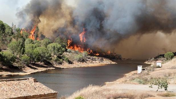 Situación crítica en Cataluña por incendio de miles de hectáreas