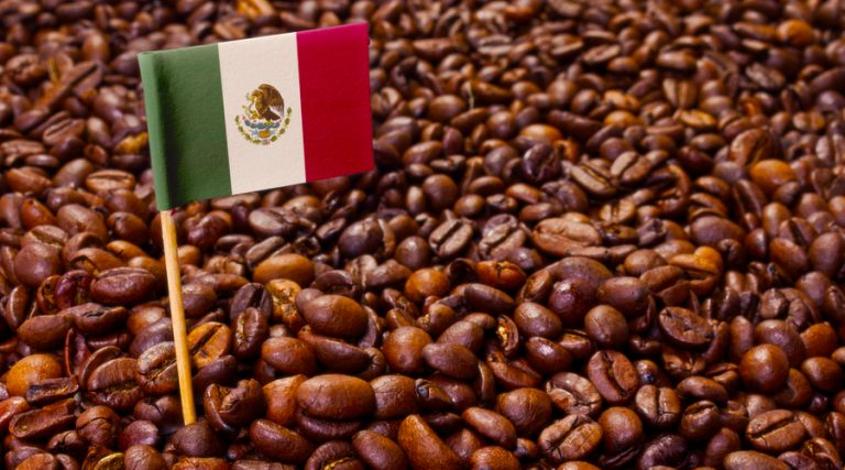 Se posiciona Corea como atractivo mercado para café mexicano