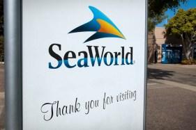 SeaWorld16 02-02-12 lo-res